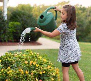 child development psychology